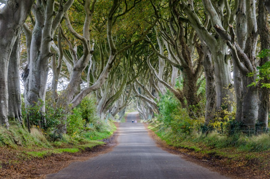 Unusual places to visit in the UK 5